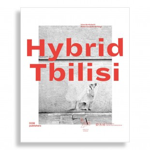 Hybrid Tbilisi. Reflections on Architecture in Georgia