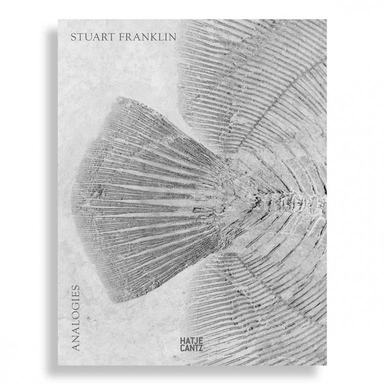 Stuart Franklin. Analogies