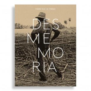 Desmemoria. Pierre-Elie de Pibrac