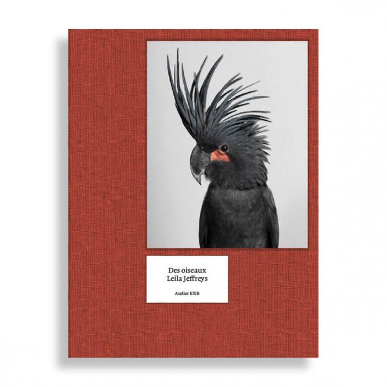 Des Oiseaux. Leila Jeffreys